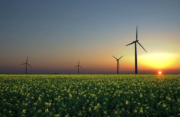 Зеленая энергия стала дешевле нефти и природного газа в 30 странах мира