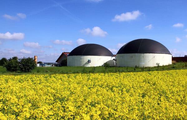 В Украине начал работу биогазовый комплекс, который может стать крупнейшим в Европе