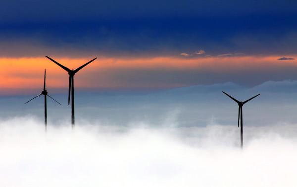 В Запорожской области планируют построить крупнейшую ветровую электростанцию в Европе