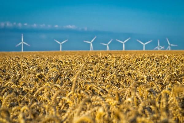 OPIC затвердили надання коштів на будівництво вітропарку загальною потужністю 500 МВт