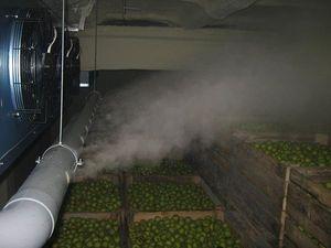 Система увлажнения Вдох-Нова 6000 смонтированная в яблокохранилище 900 куб.м. — Вдох-Нова